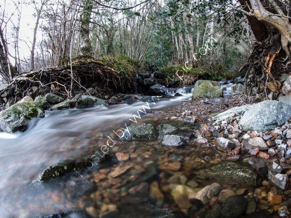 Loch Ness Stream