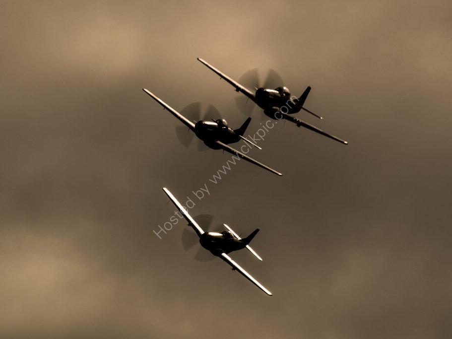 P-51 Mustang Trio