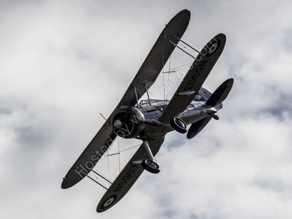 Gloster Gladiator N5903
