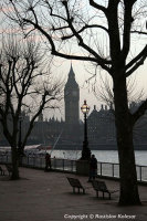 Winter on the Southbank