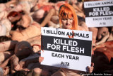 PETA Protest against Killing Animals in Slaughterhouses