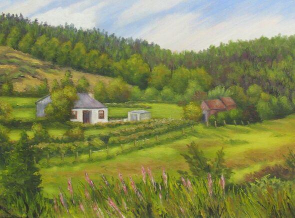 Cottage in Aughavannagh
