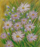 Daisies in the Wild II