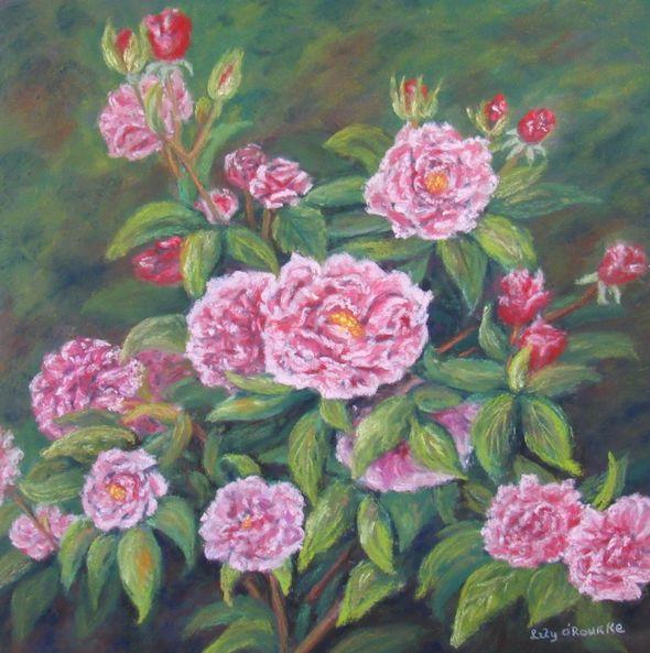 Gardens Roses