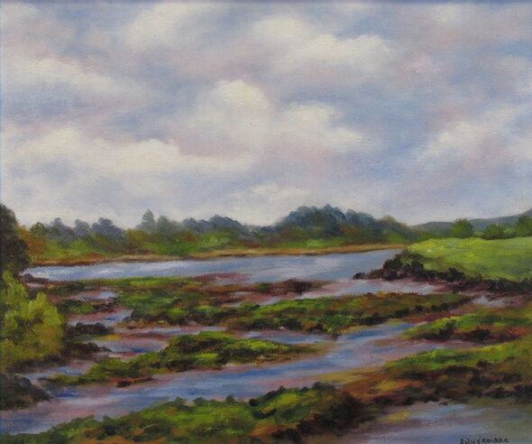 Teelin Estuary Donegal
