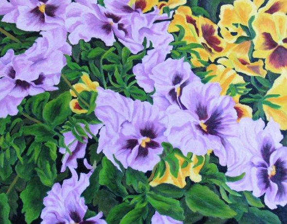 Viola Beauties