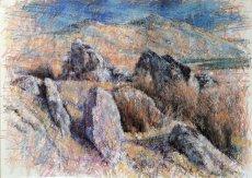 Arenig Fawr: Boulders