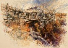 Arenig : stream under wall
