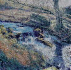 Afon Dwyryd. Ash Shadow