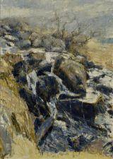 Afon Lloer: Waterfalls