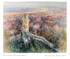 Fence Post. Mynydd Hiraethog.