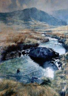 Stream Boulder Afon Dulyn