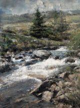 Afon Dulyn: Pines