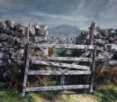 Sheepfold gate: Arenig Fawr