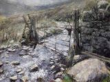 Stream under the gate, Carneddau
