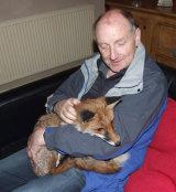 Fox-and-I