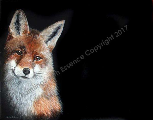 Peeping-fox-2