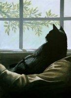 cat-in-the-window