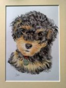 Cavapoo pet portrait from photo