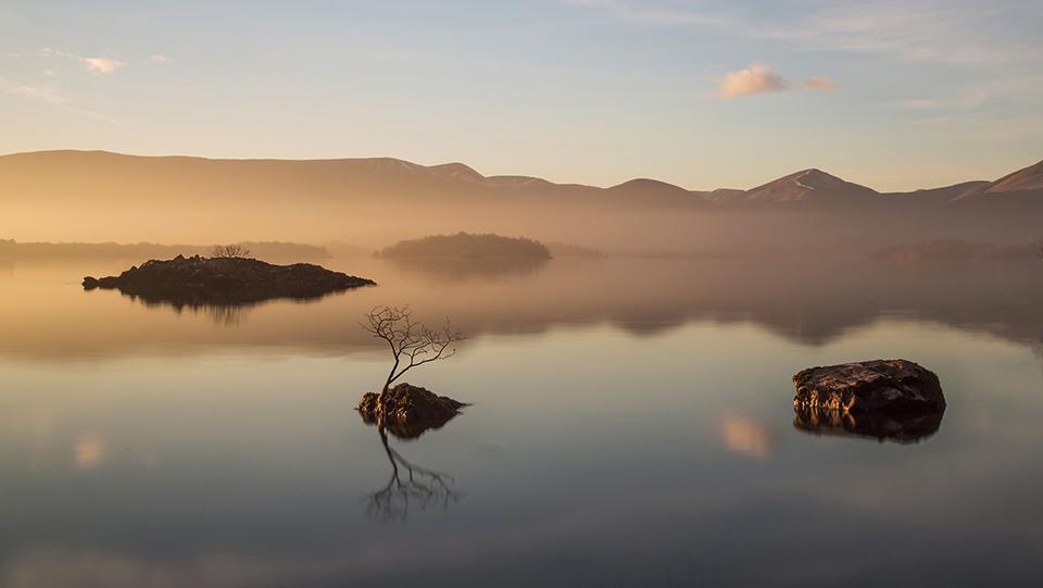 Golden Light over Loch Lomond