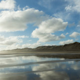 Muriwai reflections