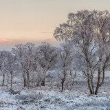 Morning Rannoch Moor