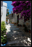 Street Skopelos
