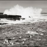 Inis Oirr Sept 2013 Stormy sea and gulls