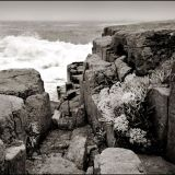 Inis Oirr, Sept 2013. stormy sea, rocks and plants