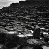 Giants Causeway, Antrim, Ni Ireland 2012