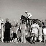 Laytown Races 1994