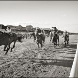Laytown Races Sept. 2013