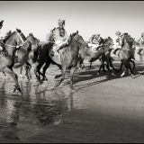 laytown Races Sept. 2103