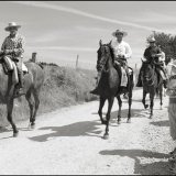Travelling the Camino on Horseback