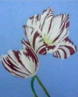 "Tulips, acrylic on canvas, 8"" x 8"", 2016"