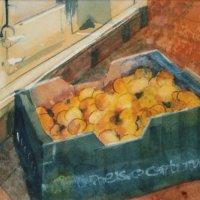 Marmalade Making 3.