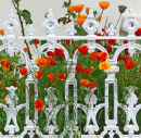 CALIFORNIA POPPIES AND WROUGHT IRON RAILINGS