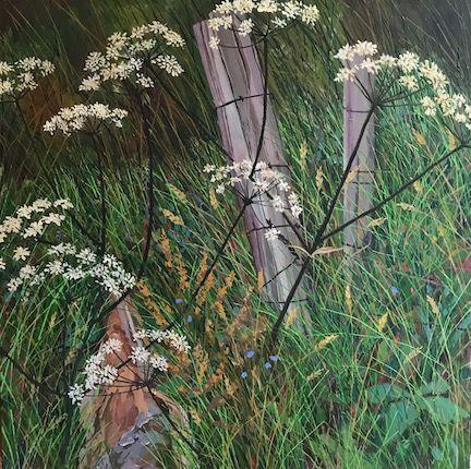 Fife hedgerow