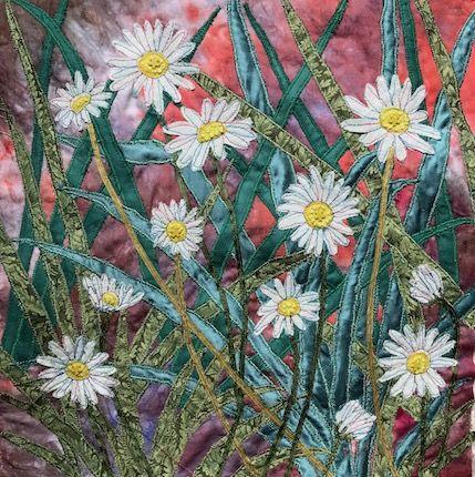 Wee daisies