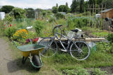 Bike and wheelbarrow