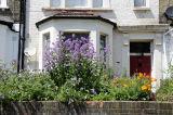 Front garden Hackney