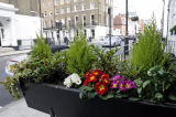 Window box style planter