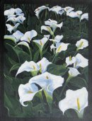 Lilies at Sissinghurst : £150