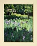 Wild Irises : £ 195