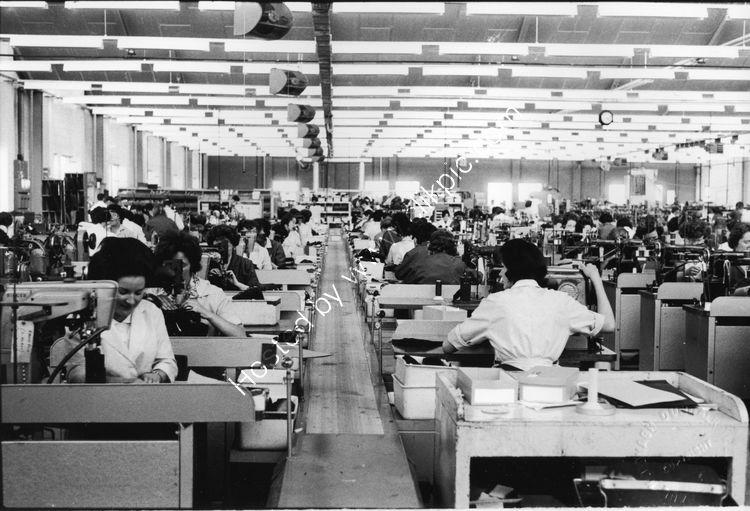 104 Hallidays/Clarkes Shoe Factory