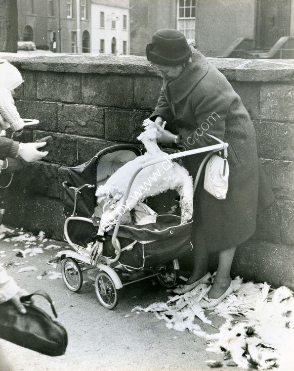 02 Turkey Market outside St. Patricks, c. 1960's