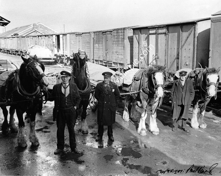 51 CIE Delivery Men at Ardee Rd depot 1960's