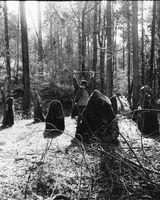 63 Druids stone circle - Ravensdale Woods