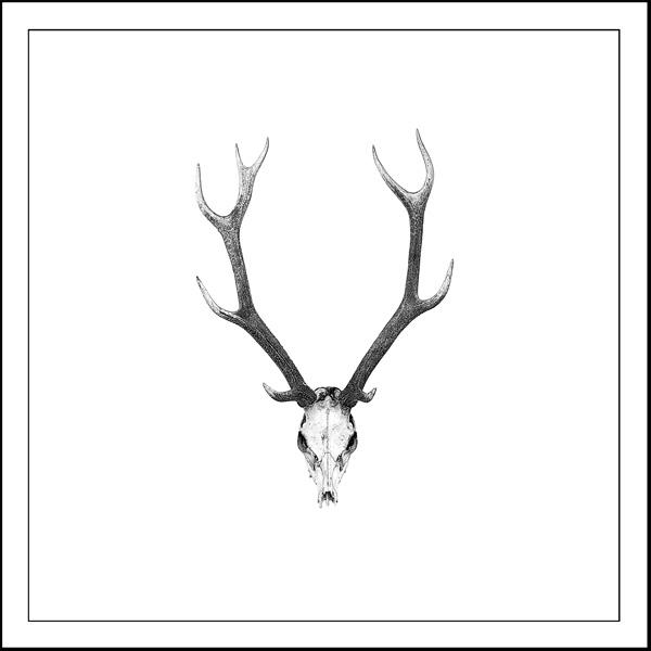 goat Artifact - Laminated vinyl image mounted on 167mmX167mm Bamboo block