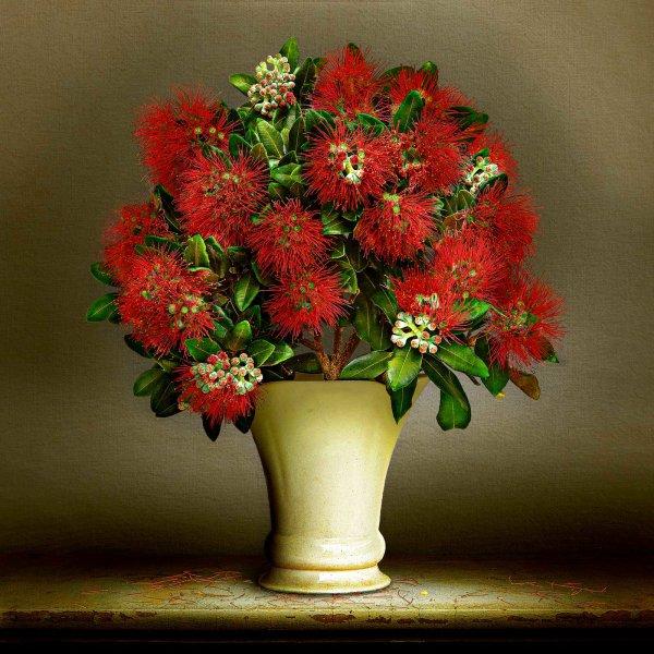 pohutukawa Native Vase